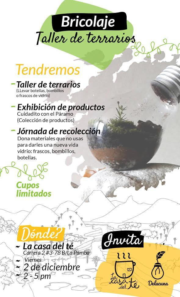 Bricolaje taller de terrarios universidad del cauca - Programa de bricolaje ...